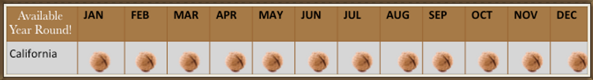 A calendar of Walnut Avalibility. California is Year Round.