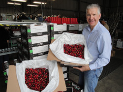 Gotelli with a box of cherries