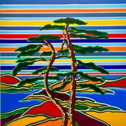 Windy Pine