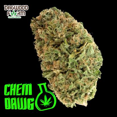 Chem Dawg