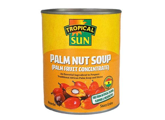 Tropical Sun Palm Nut Soup