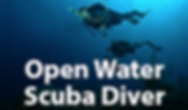 SDI-Open-Water-Diver.png