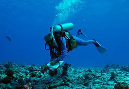 ResearchDiver_0_0.jpg