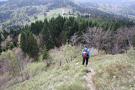 Skradski vrh, hiking, mountain biking