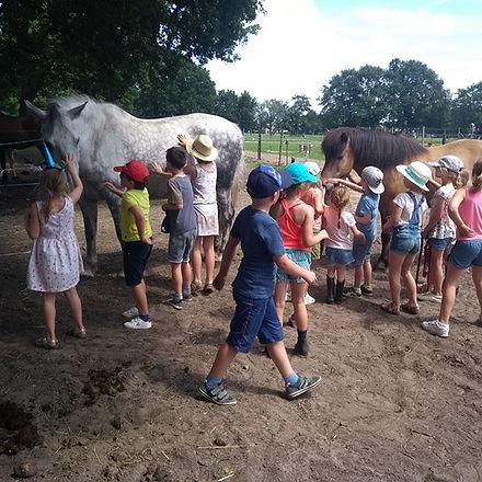 2 klasjes op bezoek in de paardentuin! :