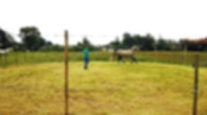 longeercirkel_edited.jpg