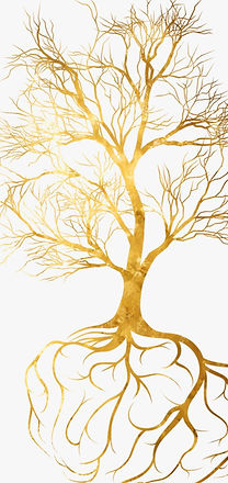 328-3288584_toby-hana-golden-tree-with-roots_edited.jpg