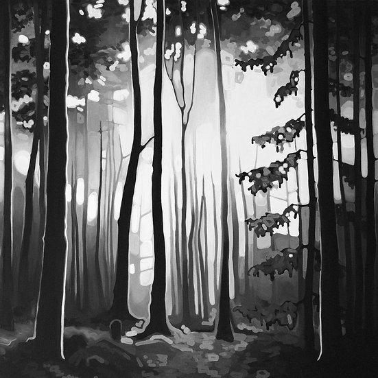 B&W FOREST | canvas print