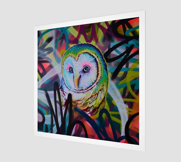 OWl VIII / Paper Print