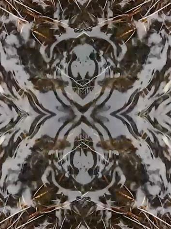Kelvin River Patterns