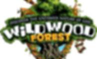 VBS Wildwood Forest.jpg