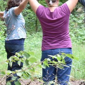 NEU: Stressbewältigung durch Achtsamkeit im Wald