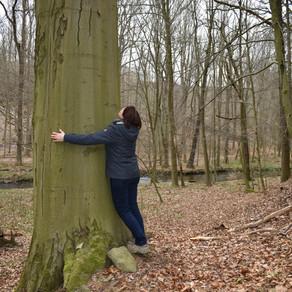 Einen Baum umarmen - NATURERFAHRUNG