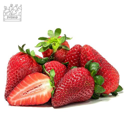 Frutillas (5 Kg)
