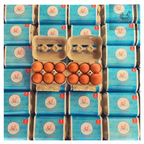 Maple de huevos de gallinas libres