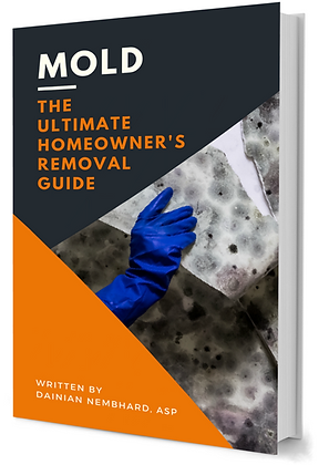 eBook Mold: The Ultimate Homeowner's Removal Guide