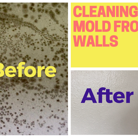 Safely Removing Mold From Walls and Ceiling