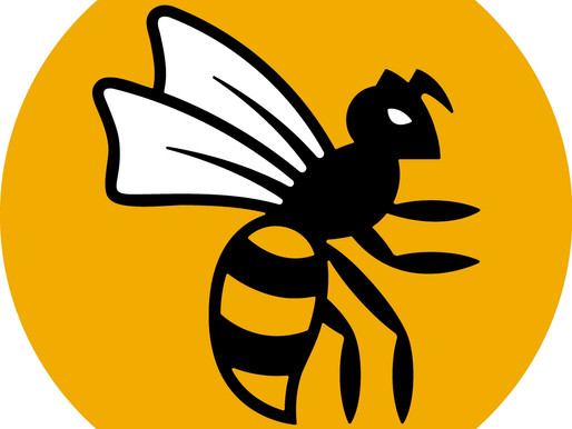 Wasps Unveil New Logo... And People Don't Know How They Feel...