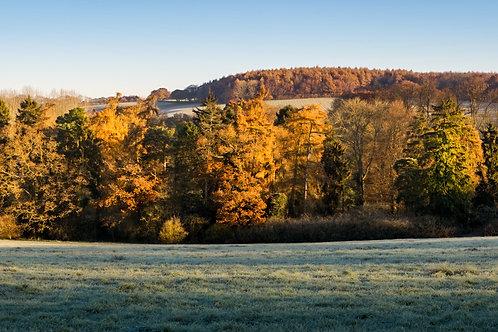 Chess Valley Autumn Panorama