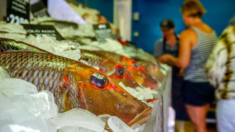 Mooloolaba fish market