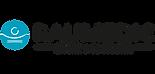 raumedic-logo.png
