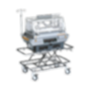 transcapsule V808.png
