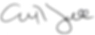 zall signature3.png