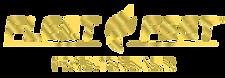 fleet feet frontrunner gold.png