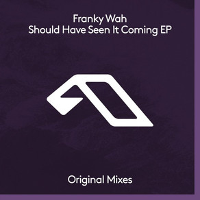 Franky Wah - Should Have Seen It Coming EP
