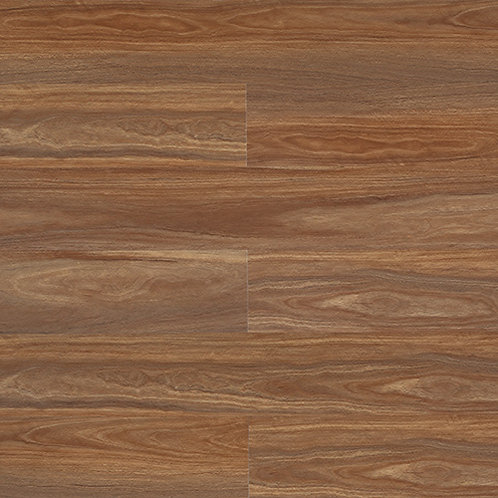 Eclipse - Darling Spotted Gum ECL03