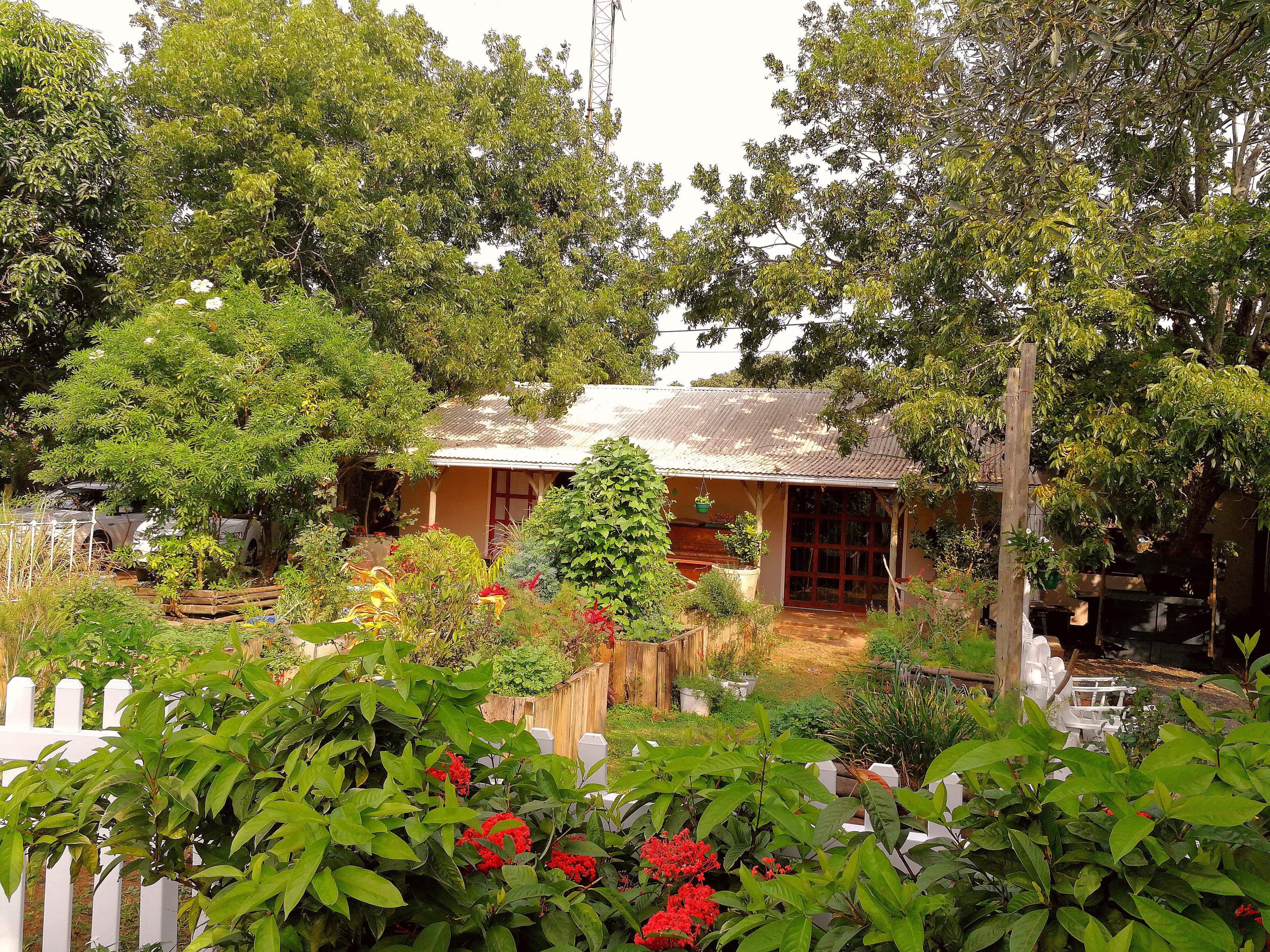 Old Food Garden