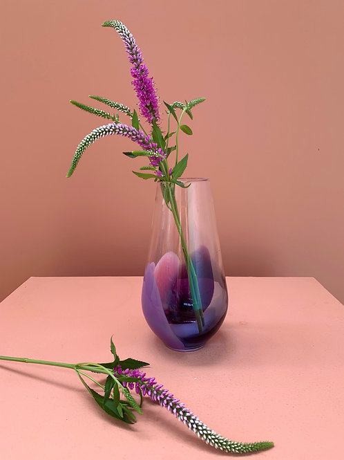 The Forager in Purple with Pink
