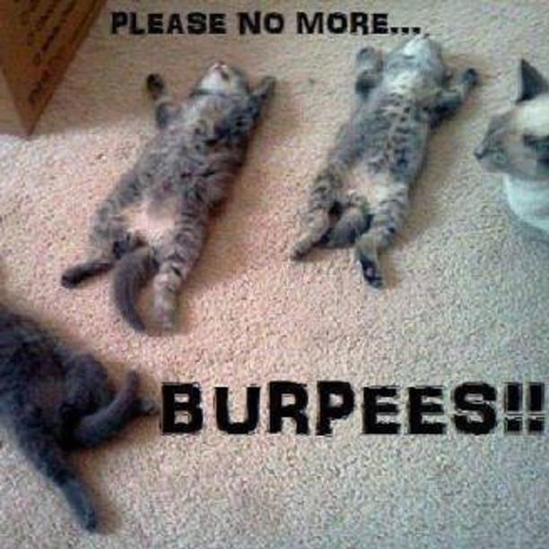 no more burpees