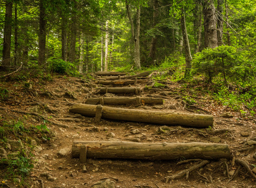 Steps to Developing Lifelong Habits
