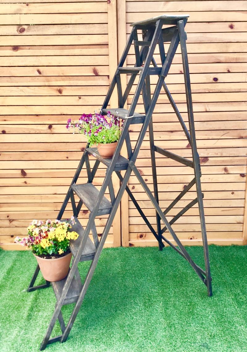 Skelton Ladder (Dark Brown)