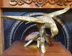 Brass Hawk