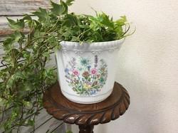 Plant pot (Aynsley)
