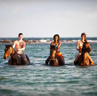 Horseback Ride 'N' Swim