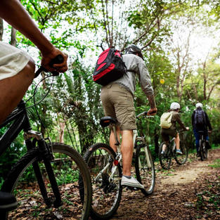 Blue Mountain Cycle Adventure