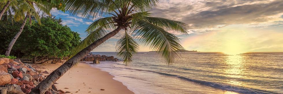 Jamaica sunset.png