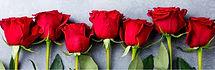 geboortemaand-juni--rozen.jpg