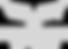 textron logo grey.png