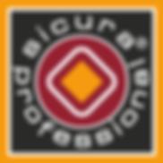Logo Sicura Post Color