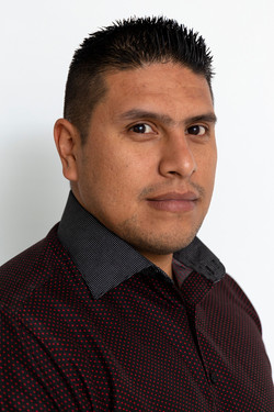 Ing. Raúl Mendoza