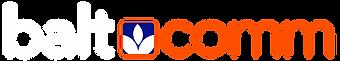 baltcomm logo w.png