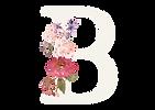 Logo_LOGO B LICHT TRANS.png