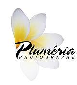 plumeria logo