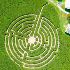 Maze of Injustice