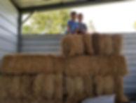 boys hay.jpg