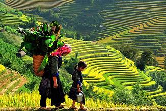 Vietnam-del-Norte-Sapa.jpg